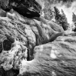 Ouzel Winter 5