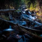 Thousand Falls Spring #2