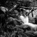 Thousand Falls Spring #6