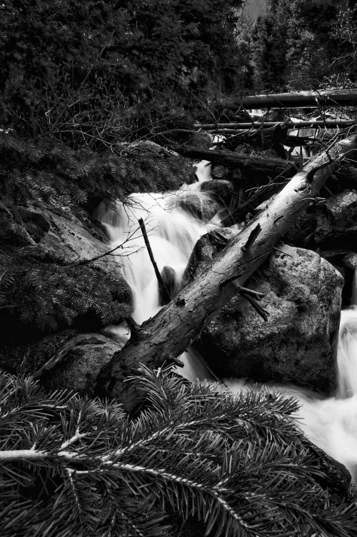Thousand Falls Spring #7