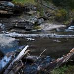 West Creek Summer #10