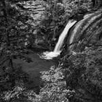 West Creek Summer #2
