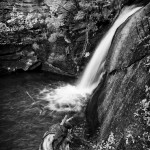 West Creek Summer #5