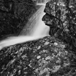 Alberta Falls Spring #10