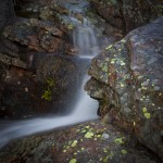 Alberta Falls Spring #5
