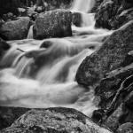 Alberta Falls Spring #6