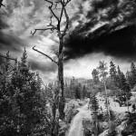 Alberta Falls Spring #7