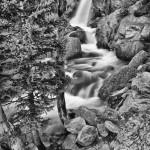 Alberta Falls Spring #9