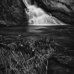 Ribbon Falls Spring #5