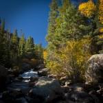Copeland Falls Autumn #2