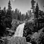Alberta Falls Summer #4