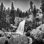 Alberta Falls Summer #5