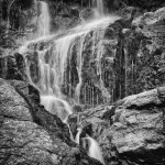 Timberline Falls Summer #10