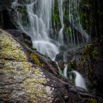 Timberline Falls Summer #5