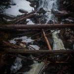 Fern Falls Spring #1