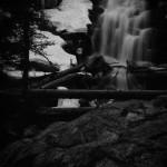 Fern Falls Spring #11