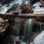 Fern Falls Spring #3