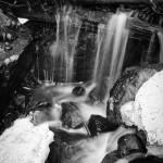 Fern Falls Spring #4