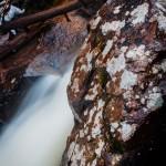Fern Falls Spring #5