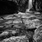 Chasm Falls Spring #3