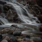 Horseshoe Falls Spring #3