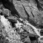 Windy Gulch Spring #5