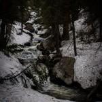 Lyric Falls Spring #3