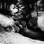 Lyric Falls Spring #4