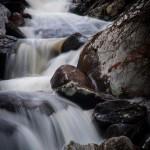 Lyric Falls Spring #8