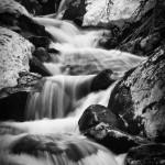 Lyric Falls Spring #9