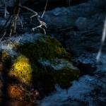 McGregor Falls Autumn #5