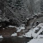 West Creek Falls Spring #3