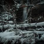 West Creek Falls Spring #4