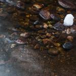 West Creek Falls Spring #6