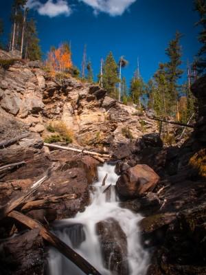 Adams Falls Autumn #5