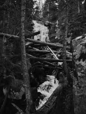 Fern Falls Summer #1