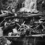 Fern Falls Summer #3