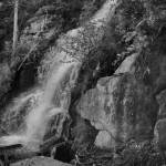 Fern Falls Summer #4