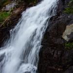 Fern Falls Summer #5