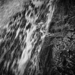 Fern Falls Summer #6